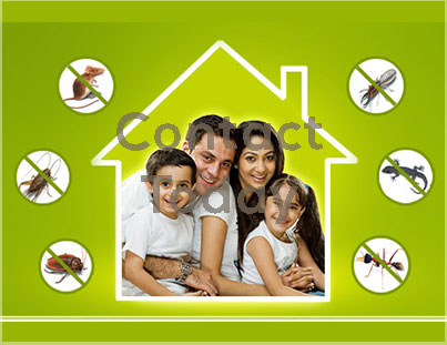 pestcontrol2